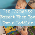 10 Things to Expect When You Own a Toddler