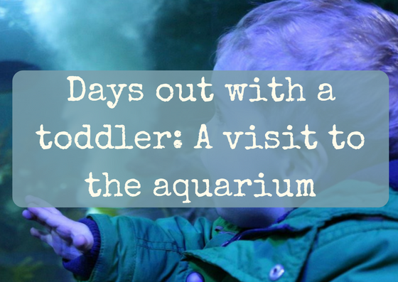 Days out with a toddler: A visit to the aquarium
