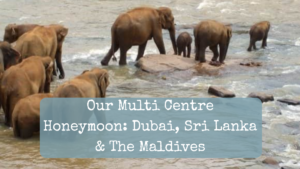 Our multi centre honeymoon