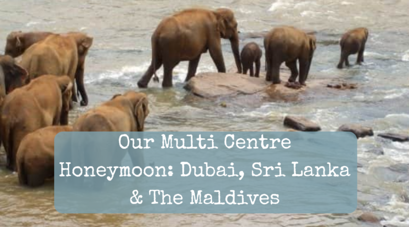 Our multi centre honeymoon