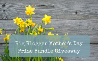 Big Blogger Mother's Day Prize Bundle Giveaway