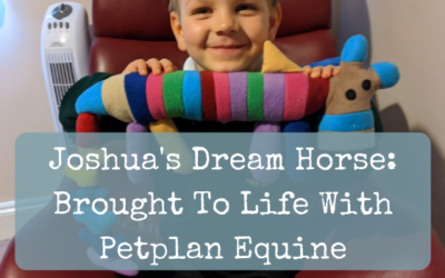 Joshua's Dream Horse: Brought To Life With Petplan Equine