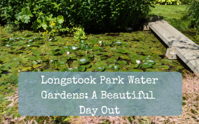 Longstock Park Water Gardens: A Beautiful Day Out