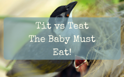 Tit vs Teat – The Baby Must Eat!