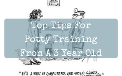 Top Tips for Potty Training From a 3 Year Old